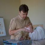 доктор Машкин, массаж, остеопатия